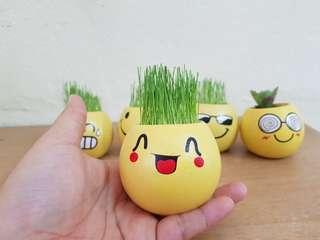DIY grass hair toy