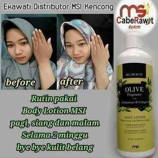 Lotion olive oil/ handbody pencerah kulit