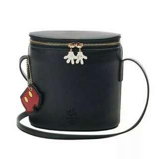 Mickey bucket bag only bag