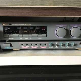 Martin Roland Karaoke Digital Echo Amplifier