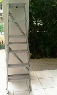 Heavy duty 6 steps Ladder