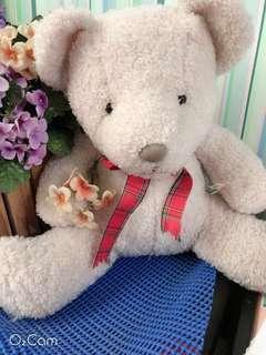 🚚 大隻的小熊娃娃