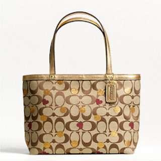 Coach Valentines edition handbag