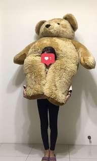 巨大娃娃 約1.6米/160cm