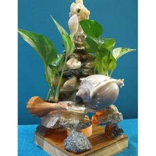 Seashell-Pebble Planter with Money Plants and English Ivy