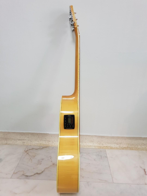 Washburn EA20 Acoustic Guitar (with plug-ins)