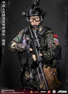 *PO* Damtoys 78048 Chinese People's Liberation Army Special Forces