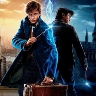 Grabbags for the Amaaazinnggg Harry Potter and Fantastic Beasts Wizarding World series!!!