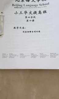 Beijing Language School Primary 3 P3 Chinese worksheets