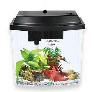 Table top fish tank with filter and light