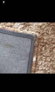 Selling a champagne color shabby carpet