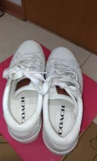 🚚 不議價,COACH專櫃9500元,我隨便賣,COACH男白鞋,M7/24.5/EU40,隨便賣