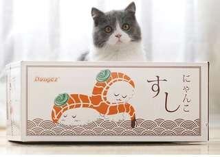 Cat scratch box