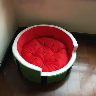 Cat bed watermelon design