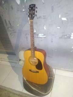 Gitar Cort AD810