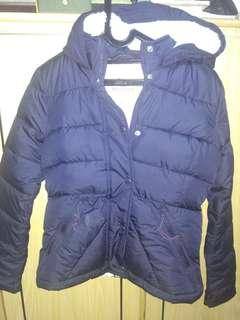Hollister winter jacket with hoodie