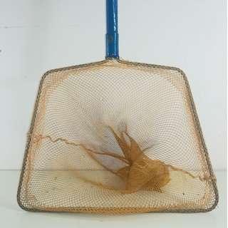 Fish Catching Net Wood Handle