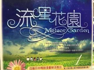 台版 流星花園(1-9完)VCD+番外篇