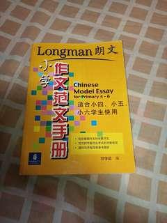 Chinese Model Essay P4-P6