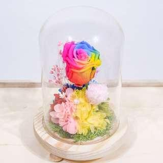 Preserved Rainbow Rose Dome