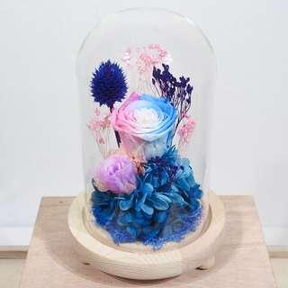 Preserved Flower Dome - Pink Blue Colourful Rose