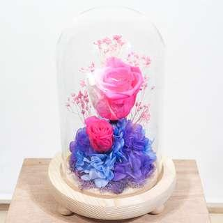 Preserved Rose Flower Dome - Blush