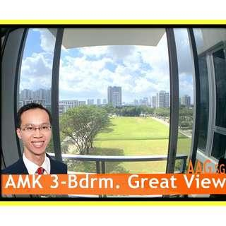 Beautiful 3-Bedroom for Rent x 02 @ Grandeur-8 Ang Mo Kio.