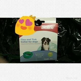 Dog anti flea herbal collar