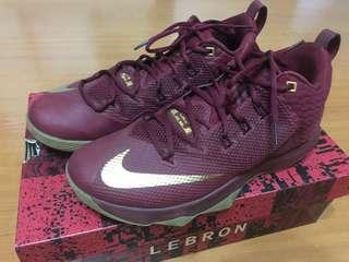 Nike Lebron James LBJ AMBASSADOR IX size:10.5