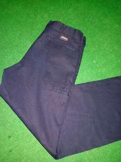 Dickes Multipocket Short Pant