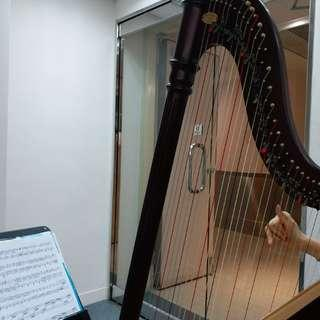 Trial Harp lesson in Lai Chi Kok studio