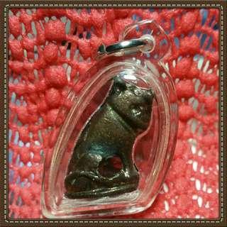 Thai Amulet tiger phra Lp pern wat bang phra