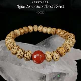 🚚 Love Compassion Bodhi Seed 27 Beads Prayer Mala Carnelian Crystal Bracelet - Bodhi Seed radiates Pure Calm Energy. Carnelian heals Root Chakra -it's about meeting our basic needs for survival & also our Past life unresolved emotional issues.