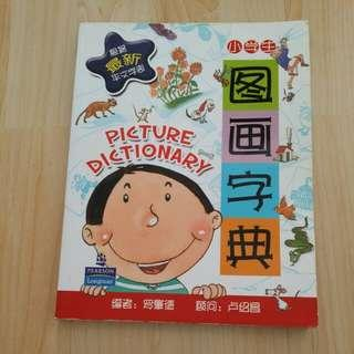 Picture Dictionary (chinese)