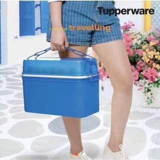 Tupperware Carry Away