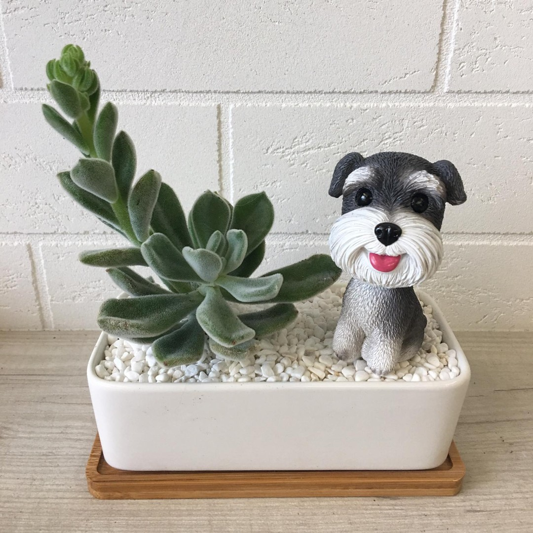 Cute Dog Themed Home Or Office Decor Gifts Gardening Plants On