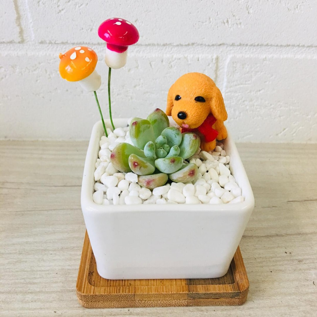 Dog Themed Home Decor Items Gardening Plants On Carousell