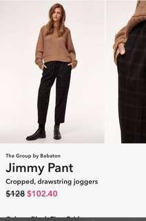 "Aritzia ""Jimmy"" pant"