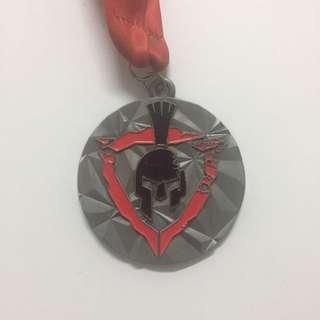 Medal - Virtual Run 300km
