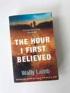 Wally Lamb 'The hour I first Believed'