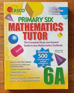 P6 Mathematics Tutor
