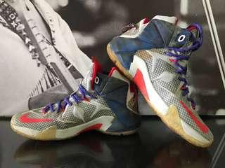 Nike Lebron James Independence