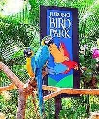 Jurong Bird Park Singapore 🇸🇬