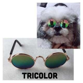 Pet Shades / Eyeglass