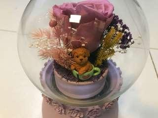 永生花 保鮮花擺設