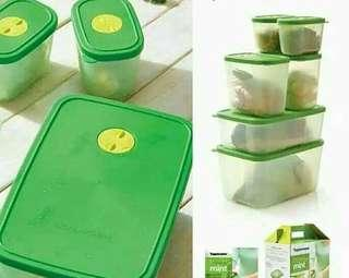 fresh mint - Tupperware