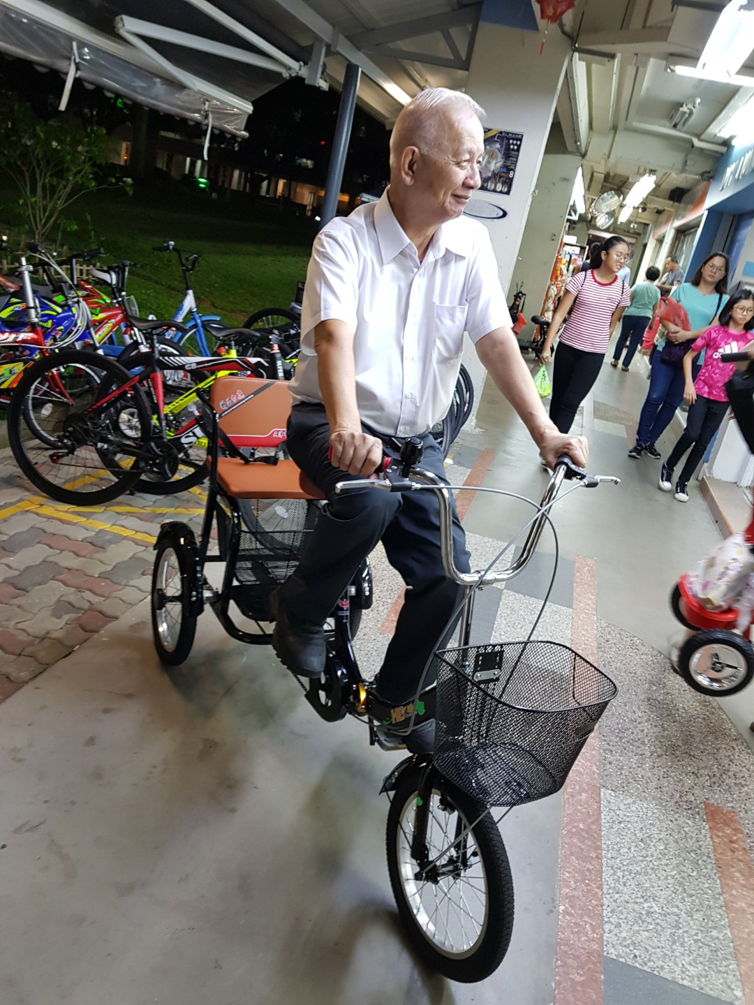 Adult Tricycle With Rear Seat Cushion