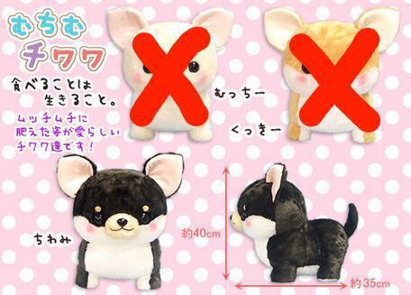 Black Colour Chiwami Chihuahua Big Stuffed Animal Toys Games