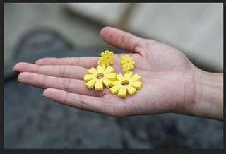 黃色小花耳環
