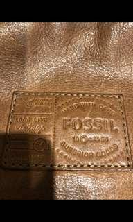Fossil body bag